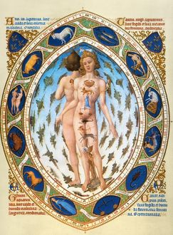 Anatomical/Astrological Man. Miniature depicting the influence of the zodiacal stars
