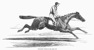 Ellington, winner of the Derby. Wood engraving, English, 1856