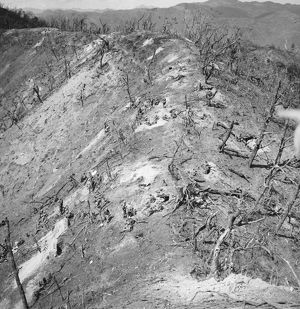 KOREAN WAR: BLOODY RIDGE. American soldiers securing the top of the hill known as