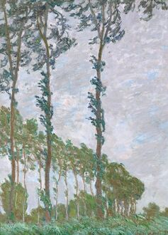 MONET: POPLARS, 1891. 'Wind Effect, Series of the Poplars.' Oil on canvas