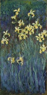 MONET: YELLOW IRISES. Oil on canvas, Claude Monet, c1915