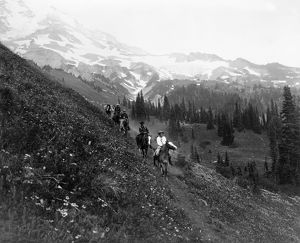 MOUNT RAINIER NATIONAL PARK. Horseback riders on the trail of Van Trump Park in