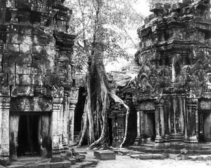 A partial view of the ruins of the Bayon temple, Ta Prohm at Angkor, Cambodia, 1960.