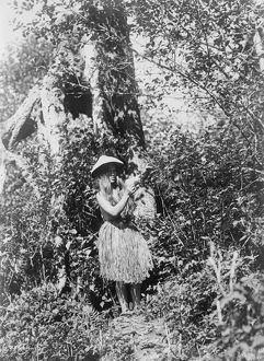 QUINAULT WOMAN, c1913. Quinault woman picking berries in the Pacific Northwest