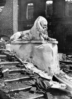 SAN FRANCISCO EARTHQUAKE. A lion statue intact and surrounded by rubble, following