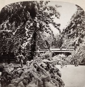 SNOWSTORM, 1862. View of a snowstorm in October. Photograph by Frederick Ferris Thompson